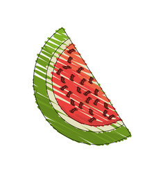 drawing watermelon fruit food vector image