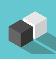 isometric couple cubes vector image