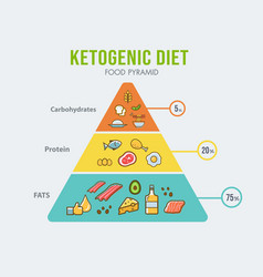 ketogenic diet food pyramid infographic vector image