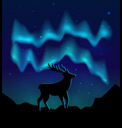 Landscapes northern lights in starry sky and vector