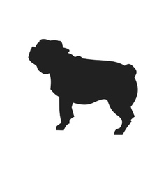 Pug Black Silhouette vector image