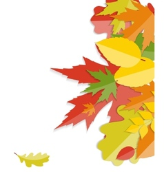 Shiny Autumn Natural Leaves Background vector