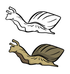 snail sketch doodle hand drawn with vector image