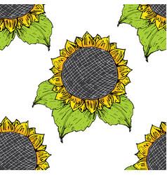 sunflower seamless pattern hand drawn sketch vector image