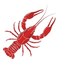 boiled red crayfish crawfish vector image