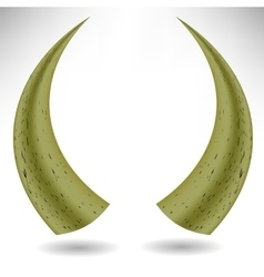 Animal Horns Isolated vector
