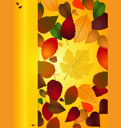 Autumn background portrait with copy space panel vector