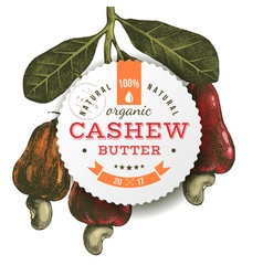 Cashew butter emblem over hand drawn nuts branch vector
