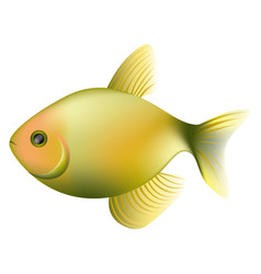 color fish icon image vector image