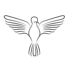 pigeon peace front view on silhouette vector image