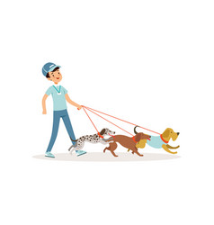 smiling boy walking with group of different breeds vector image vector image