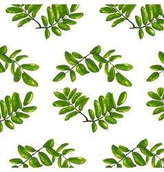 Rhombic Leaves Seamless Pattern vector image vector image