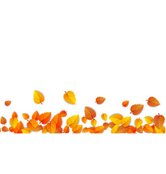 autumn leaves horizontal banner isolated on white vector image