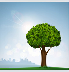 green tree with leaves nature on the background vector image