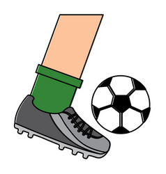 Leg kicking a soccer ball vector