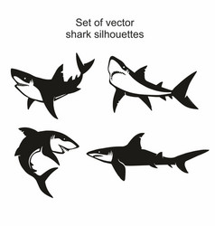 set of four shark silhouettes vector image
