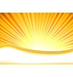 summer banner full of shine vector image vector image