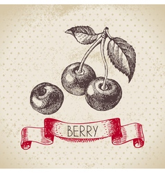 Cherry Hand drawn sketch berry vintage background vector image