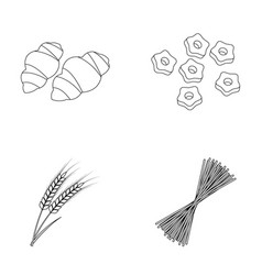 Different types of pasta types of pasta set vector
