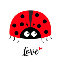 Red lady bug ladybird icon love greeting card vector