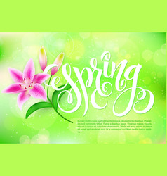 spring lettering with lily flower on a blur vector image