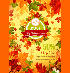 autumn sale discount offer banner with fall leaf vector image