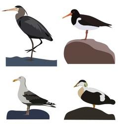 Set of sea birds vector image vector image