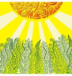 Nature pattern background with sun vector image vector image