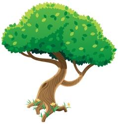 tree on white vector image
