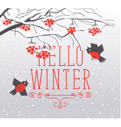 winter landscape with snow-covered rowan and birds vector image