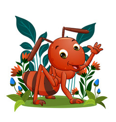 Big red ant is waving his hand and giving vector