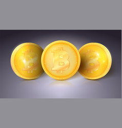 coins of currency bitcoin with glare and vector image