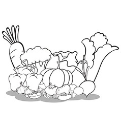Different vegetables vector image