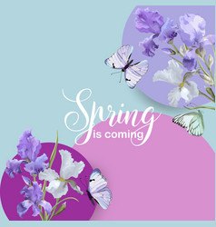 floral spring banner with flowers and butterflies vector image
