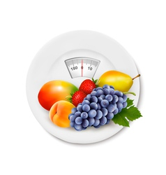 Fruit on the weight scale Diet concept vector image