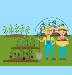 gardener family rural garden with eco vegetables vector image