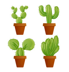 Green mexican cactus plant or cacti succulent in vector
