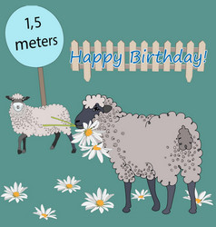 Happy birthday greetings from cute sheep vector
