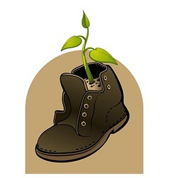 Life in a shoe vector image