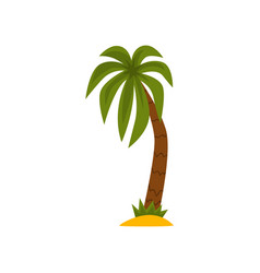 palm tree beautiful tropical evergreen plant vector image