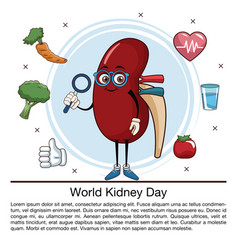World kidney day infographic cartoon vector