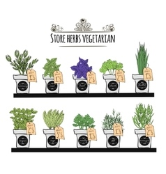 Set balcony herbs and spices on the counter of the vector image vector image