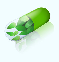herbal capsule with flying mint leaves inside vector image
