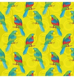 Seamless background parrots vector image