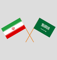 The iranian and ksa flags vector