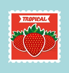 Tropical fruit vector