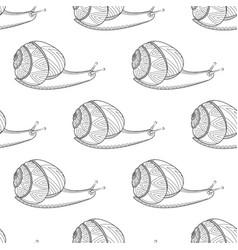 snail black and white colors invertebrates vector image