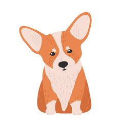 adorable pembroke welsh corgi small cute lovely vector image