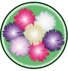 bouquet asters vector image