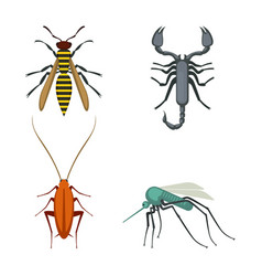 Collection of icons of colorful bugs on vector